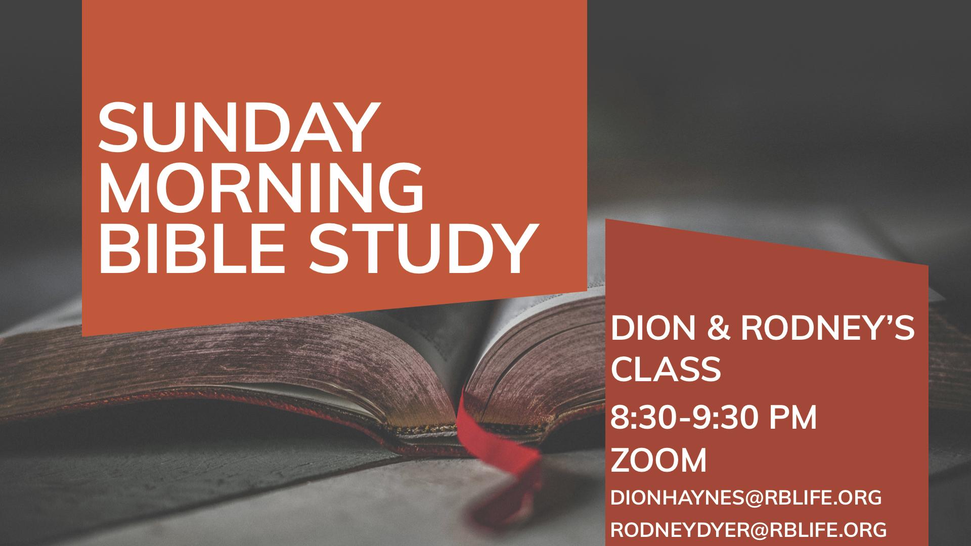Bible Study/Haynes/ Dyer