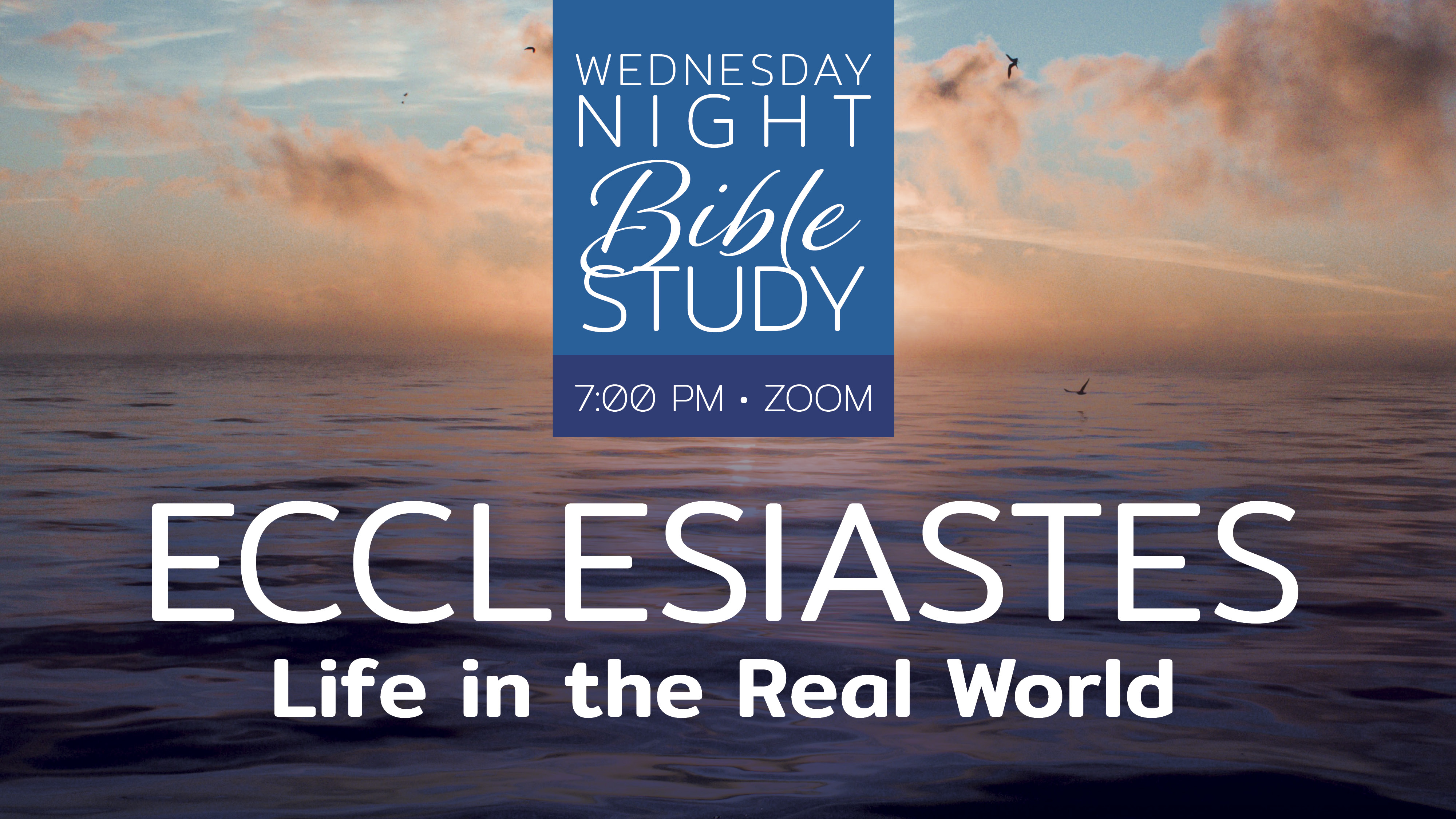 Wednesday Night Bible Study (ONLINE)